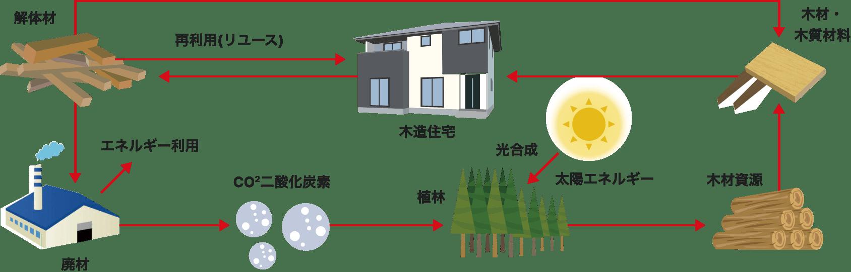 木材の生産利用の流れ イメージ