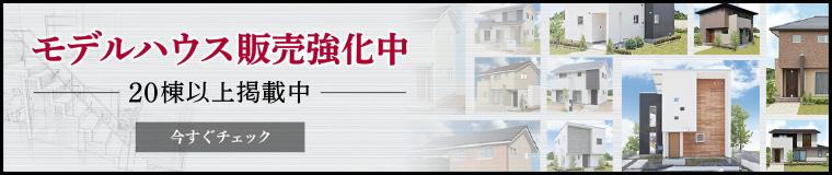 建売住宅強化中